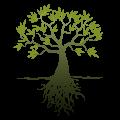 Logo Olivenblattextrakt4u.de: Olivenblattextrakt: Wirkung, Heilkraft, Gesundheit, Krankheiten