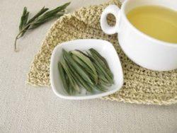 olivenblatt-tee cholesterin, olivenblatt tee bluthochdruck, olivenblatt tee diabtetes